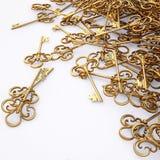 Key. Bunch of elegant gold keys. 3d image Royalty Free Stock Images