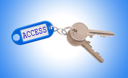 Key with Access label isolated Royalty Free Stock Images