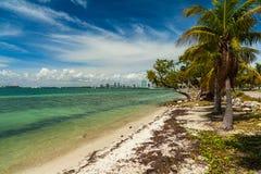 Key Biscayne strand arkivfoto