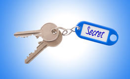 Key with blank label isolated Royalty Free Stock Photo