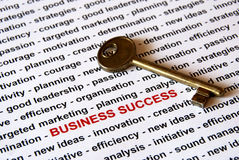 The key of business success. A lot of topics about  business success (words in red) and a key - concept background Royalty Free Stock Image