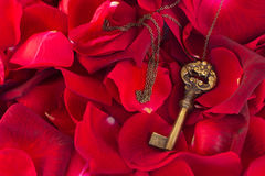 Key with crimson rose petals Stock Photography