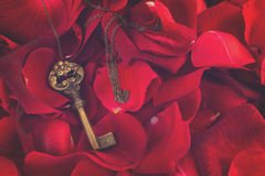 Key with crimson rose petals Royalty Free Stock Image