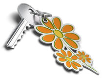 Key for eco friendly home Stock Images