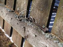 The key in the forest on the old fence is a universal combination of functionality and elegance. stock image