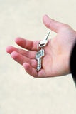 Key in hand Stock Image