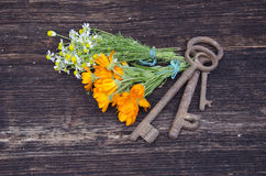 Key of health - medical herbs and old tools Royalty Free Stock Photo