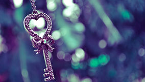 Key from the heart royalty free stock photography