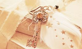 Key, Heart, Spring, Star, Pearl Royalty Free Stock Photography