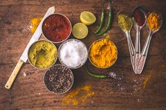 Key Ingredients Of Kitchen, Indian Spices. royalty free stock photos