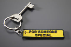 Key with keychain Stock Images