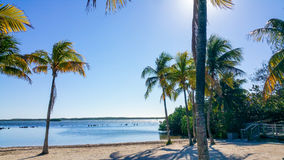 Key Largo. Florida just after sunrise. Vibrant, vivid colors on a gorgeous sunny morning in the Florida Keys Stock Photography