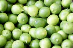 Key Limes. Displayed at a produce market stock photos