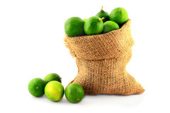Key Limes in Burlap Bag on white. Royalty Free Stock Photos