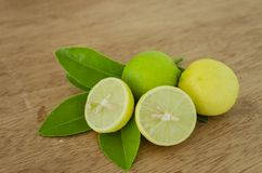 Key Limes And Leaves. On brown board surface, and on green leaves are yellow ripe, and green unripe key limes. One of the limes is cut in halves showing its vector illustration