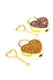 Key of love Royalty Free Stock Photos