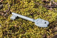 Key on moss Royalty Free Stock Photo