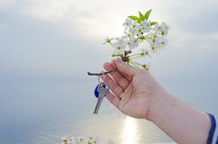 The key to the new house and the branch of cherry blossoms in hand. The key is from a new house and a cherry blossom branch in hands on a sunset background Stock Image
