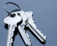 Key ring and keys Royalty Free Stock Photography