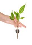 Environmental key  Stock Image