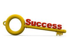 Key with success Stock Image