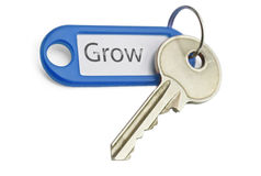 Key to grow. The blue keyring key to grow on white background Stock Image