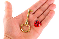 Key to Happiness. Hand with a golden key and ladybugs as a symbol of happiness - isolated Stock Photo