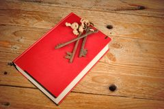 The key to knowledge Stock Image