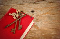 The key to knowledge. A concept on the importance of education Stock Images