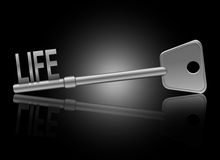 Key to life concept. Illustration depicting a key with a life concept Stock Image