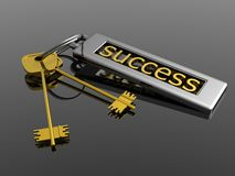 Key to success Royalty Free Stock Photo