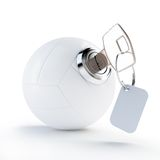 Key volleyball ball Stock Image