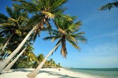 Key West佛罗里达 库存照片