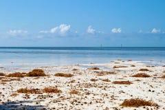 Key West, Флорида, США. Стоковая Фотография