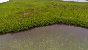 Key West aérien la Floride banque de vidéos