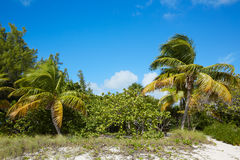 Key West beach fort Zachary Taylor Park Florida Stock Images