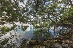 Key West Beaches in Florida royalty free stock photos