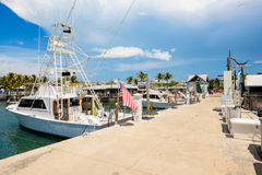 Key West Bightmarina Arkivfoto