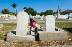 Key West cemetery Royalty Free Stock Photography