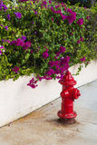 Key West fire hydrant Stock Image