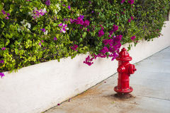 Key West fire hydrant Royalty Free Stock Photography