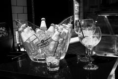Schweppes yellow bottles in glass with ice cubes Royalty Free Stock Image