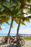 Key west florida beach Clearence S Higgs Stock Images