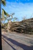Key West Garden Club West Martello Tower royalty free stock image