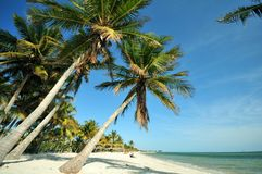 Key West la Floride Photos stock
