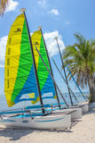 Key West sailing boats. Key West, Florida, United States - April 12, 2012: colored catamaran sailboats on shore of Smathers Beach. Smathers Beach is Key West's Stock Photography