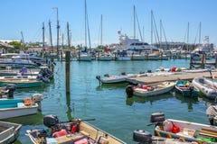 Key West segelbåtar Arkivbilder