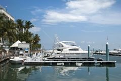 Key West Town Marina stock images