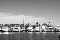 Key West, USA - 8. Februar 2016: Yachten und Segelschiffe machten am Seepier auf sonnigem blauem Himmel fest Segelsport und Segel stockbild