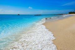 Key West vara el fuerte Zachary Taylor Park Florida fotos de archivo